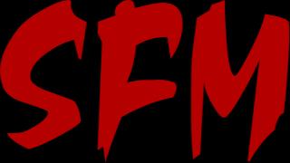 SFM Ses & Işık Organizasyon